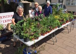 Lions Ladies fundraising with their plant stall